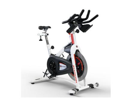 schwinn AC sport exercise bike