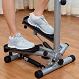 Sunny Mini Twister Stepper with Handle Bar