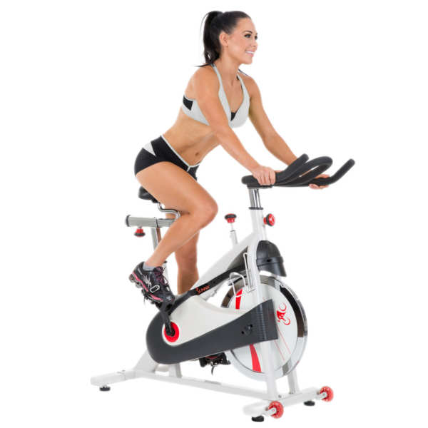 Sunny Health And Fitness Indoor Cycle