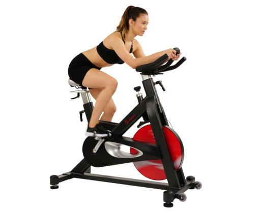 Sunny Health Fitness Evolution Pro SF-B1714 Indoor Cycling Bike